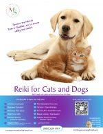 animal reiki poster